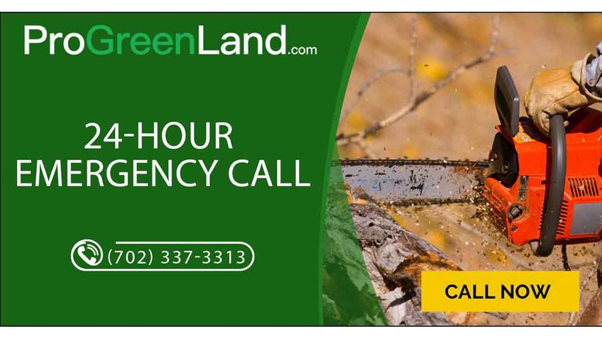 24 Hour Emergency Service This Fall