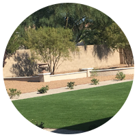 Vegas Lawn Maintenance from Green America Tree & Landscaping